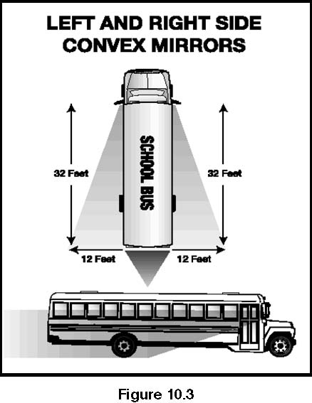 Image Showing How Bus Outside Left and Right Side Convex Mirrors Should be Adjusted.