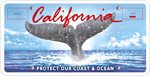 Whale Tail (California Coastal Commission) special interest license plate.