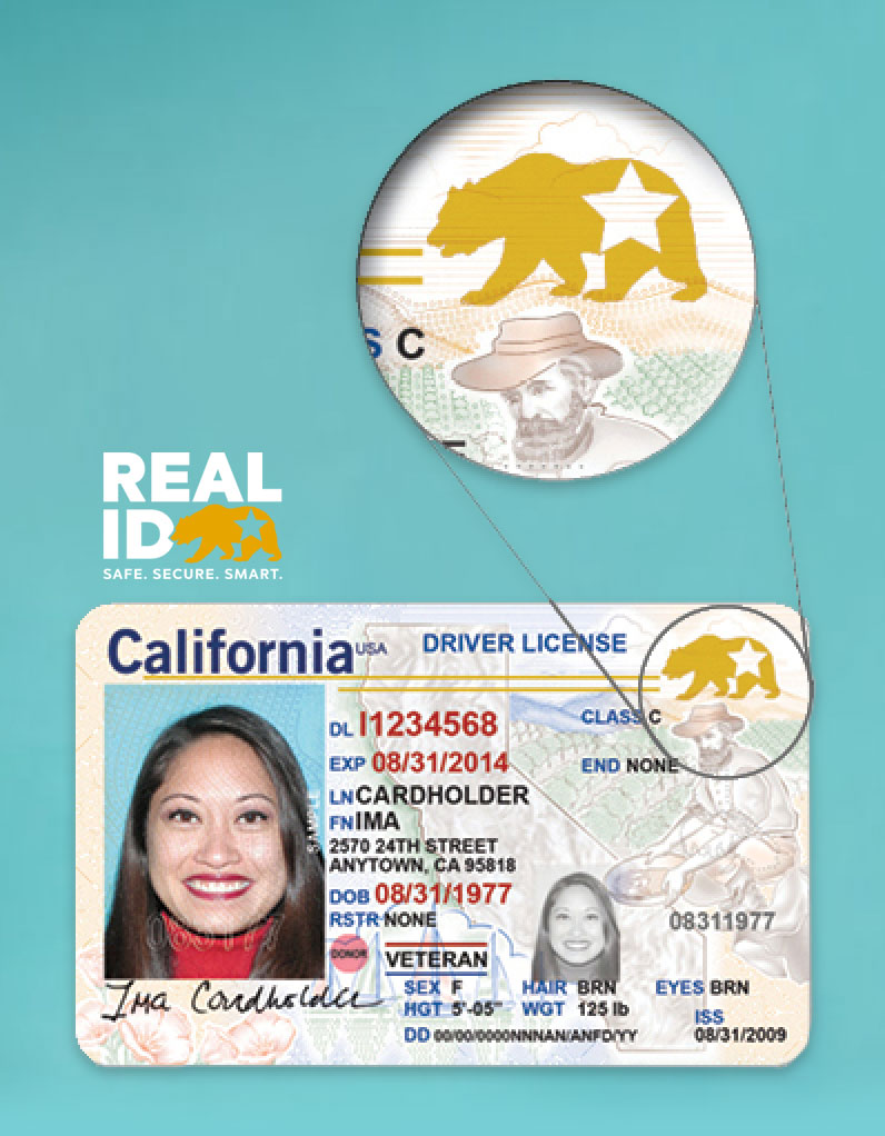Graphic displaying a REAL ID. A bear with a star in the top right corner indicates a REAL ID