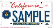 Gold Star Family license plate.